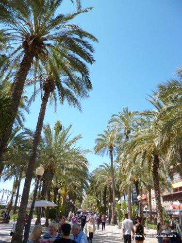 Alicante, cultural programs,homestay (15).JPG