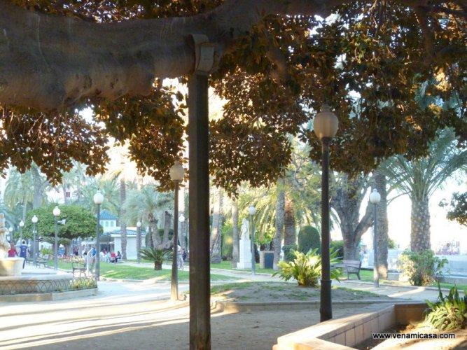 Alicante, cultural programs,homestay (5).JPG