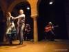 Flamenco spectacle
