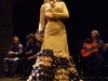 Flamenco spectacle