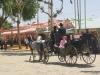 Feria de Sevilla,Spain,Espagne,carriages,voitures (2)