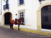 Feria de Sevilla,Spain,Espagne,horseman,cavalier (3)