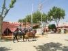 Feria de Sevilla,Spain,Espagne,horseman,cavalier (7)