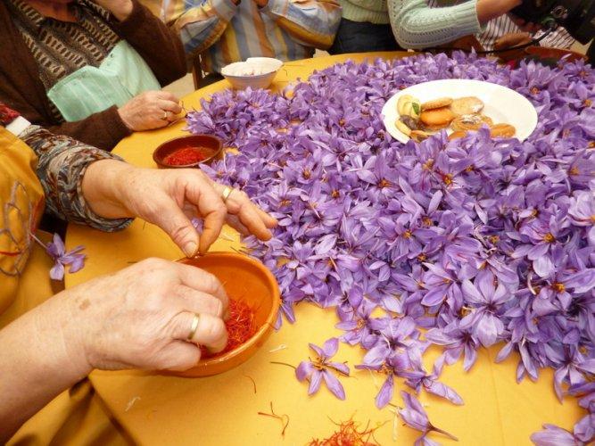 Peel of Saffron