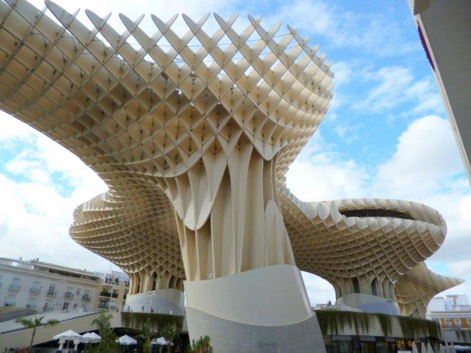 Las Setas (The Mushrooms)