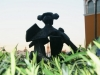 Estatua del torero Juan Belmonte